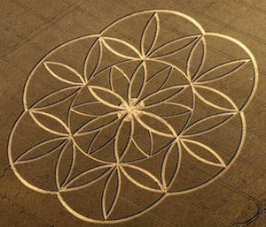 Flower of Life Crop Circle